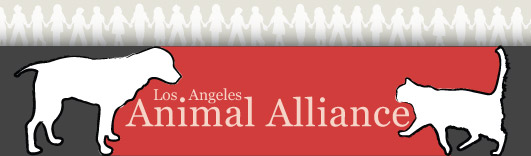 Los Angeles Animal Alliance